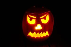 pumpkin-1005077_960_720