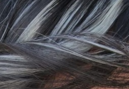 stribrny-melir-do-cernych-vlasu