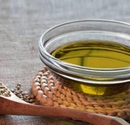 Konopný olej a jeho vliv na zdraví