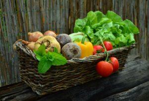 Jaká dieta je nejlepší? Proteinová dieta